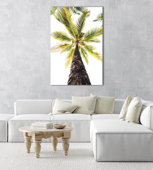 Green palm tree against white sky in Malindi Beach Kenya in an acrylic/perspex frame