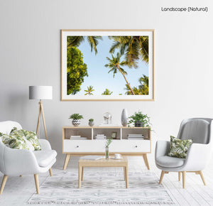 Green palm trees and blue sky in Kenya in a natural fine art frame