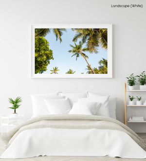 Green palm trees and blue sky in Kenya in a white fine art frame