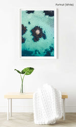 One rock with seaweed in middle of blue green water from above in a white fine art frame