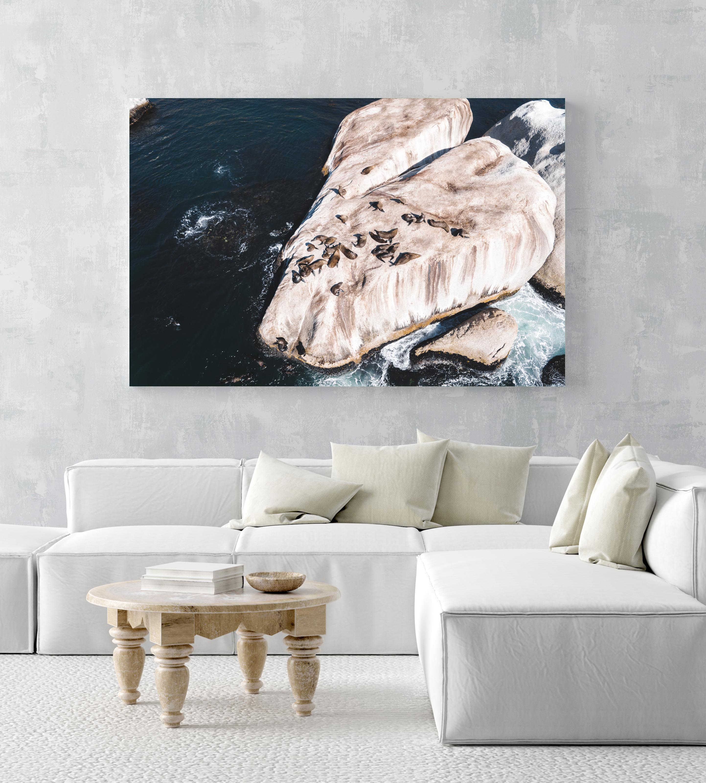 Aerial of seals lying on a big rock at Oudekraal Cape Town in an acrylic/perspex frame