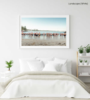 Lots of pink cap swimmers about to get in water at Shelly Beach Sydney in a white fine art frame