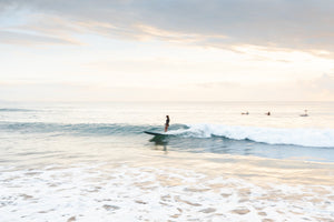 Girl surfing on a wave during sunrise on Manly Beach in Sydney