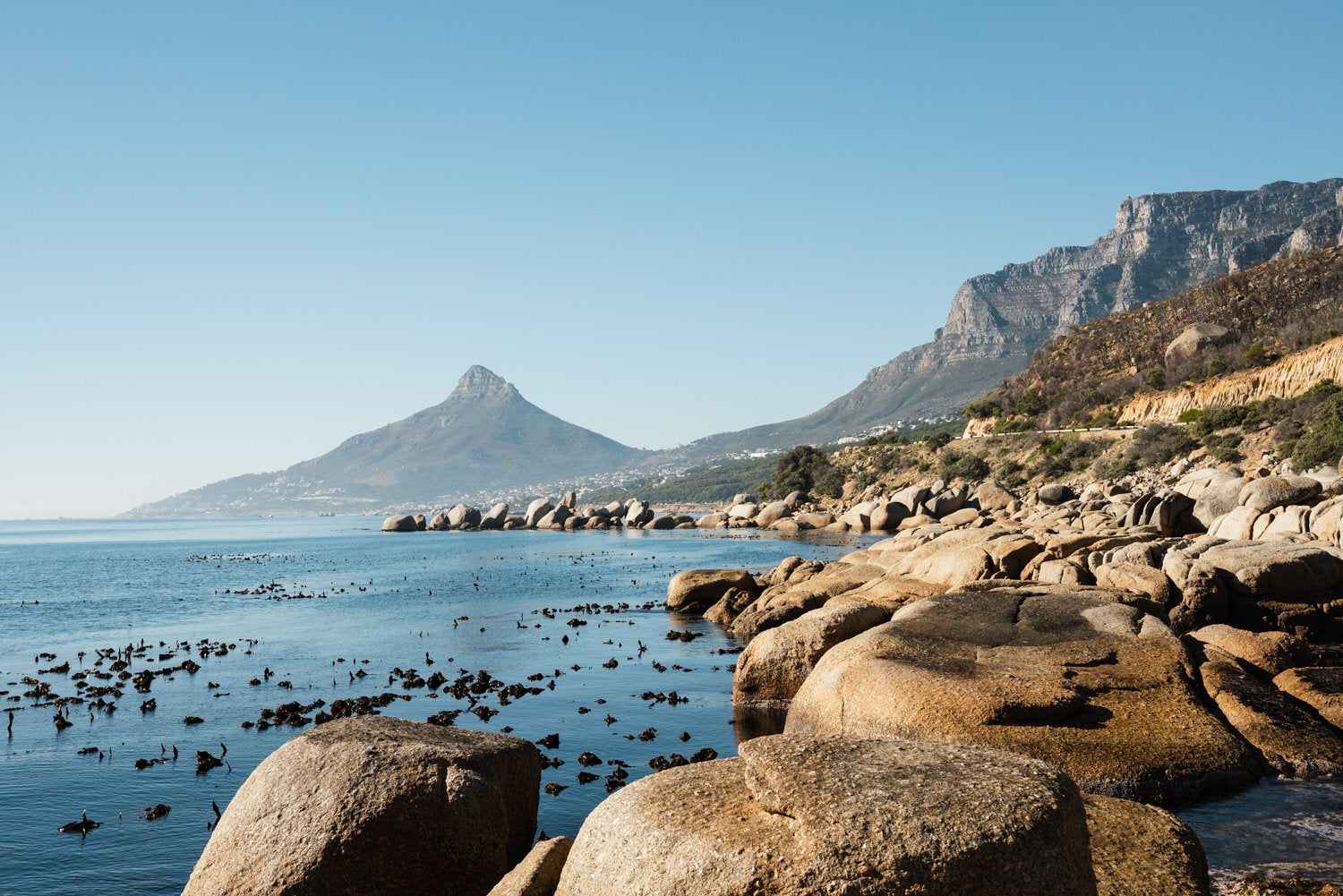 Lions Head seen from Oudekraal's blue water and rocks