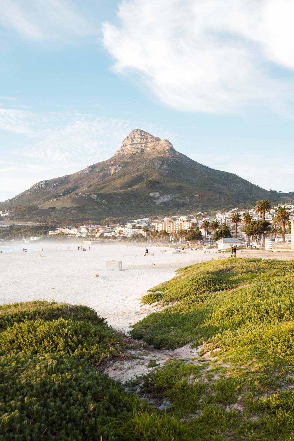 Lions Head seen from Camps Bay beach with green grass