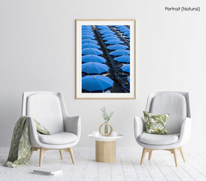 Blue umbrellas and beach chairs lined up in Italy in a natural fine art frame