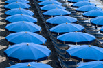 Rows of blue umbrellas and chairs on italian beach