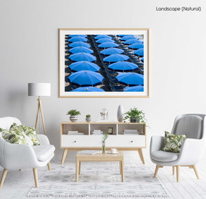 Rows of blue umbrellas and chairs on italian beach in a natural fine art frame
