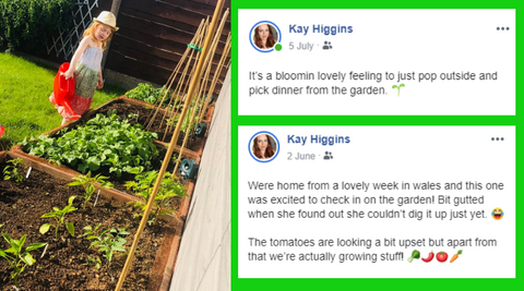 Instagarden review. Reclaimed Wooden Raised Bed No DIY. Instagarden. Grow Your Own Food