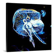 Load image into Gallery viewer, Electric Jellyfish