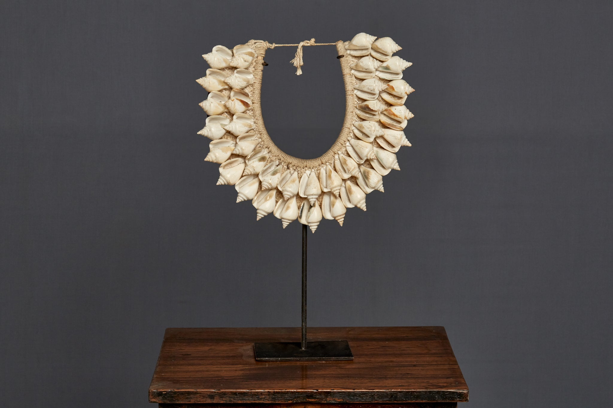 Mounted Ceremonial White Welk Necklace from Papua