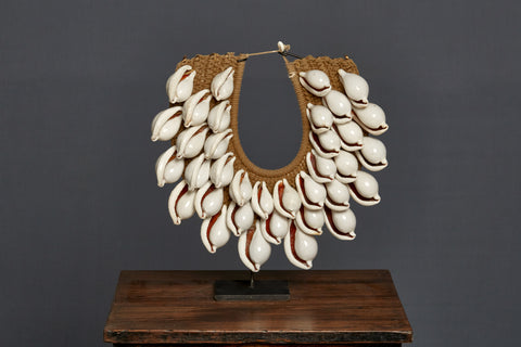 Ceremonial Cowrie Shell Necklace from Papua