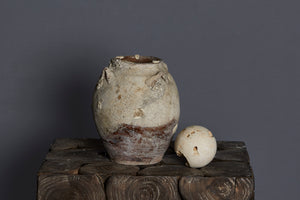 16th Century Vietnamese Shipwreck Pot with Shell Encrustations