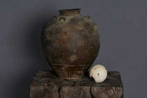 17th Century Vietnamese Shipwreck Pot Found off the Coast of Sumatra