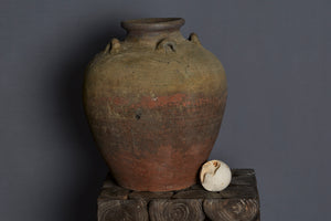 Large 17th Century Vietnamese Shipwreck Jar made for the Spice Trade