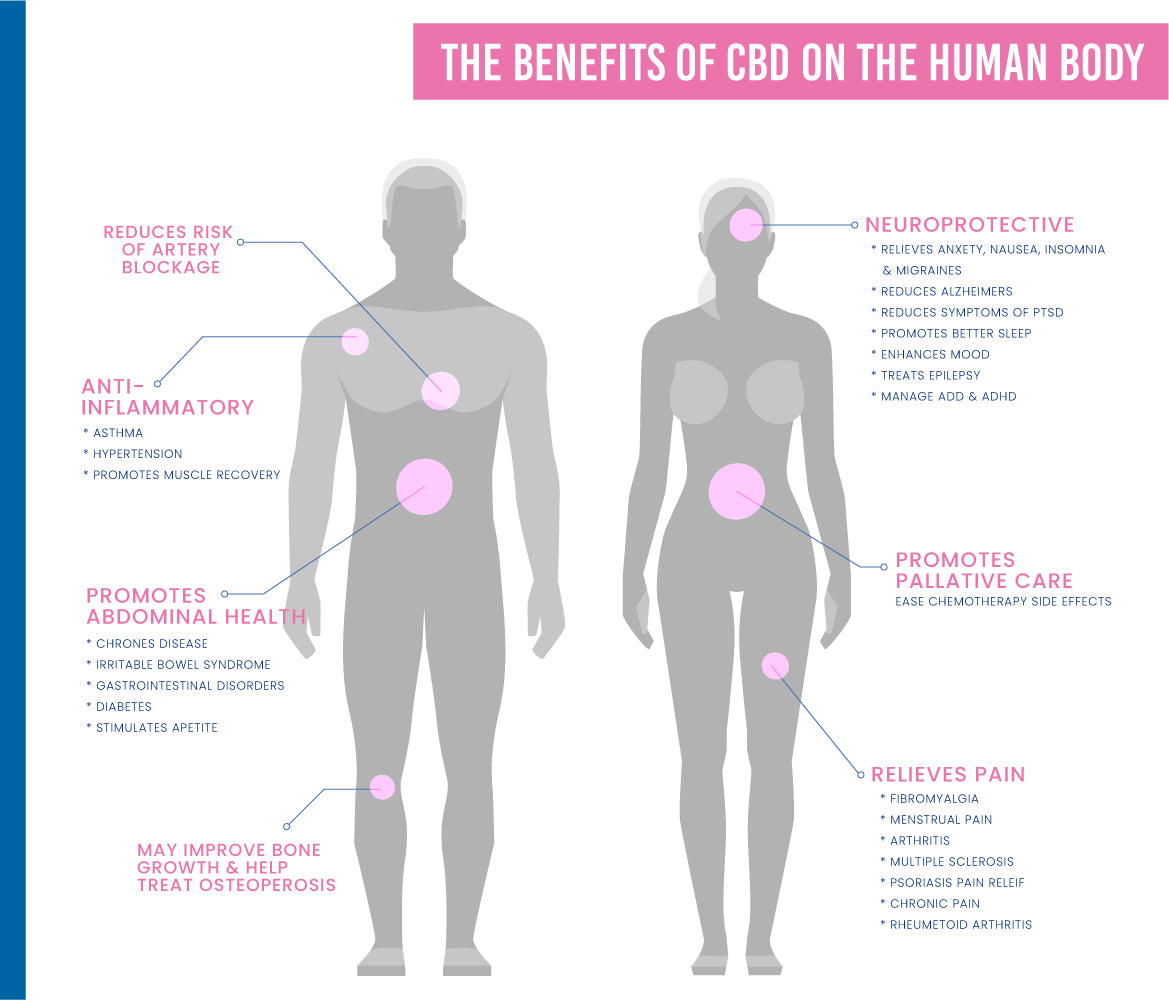 Benefits of CBD on the Human Body