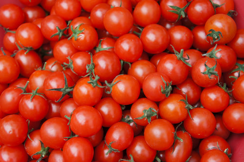 Tomatoes – Cherry Punnet