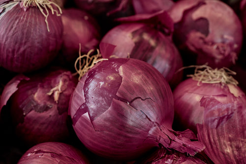 Onion – Red