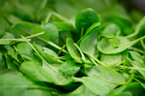 Spinach – Baby 300g