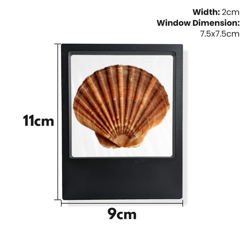 Time Clip™ Display Frame - Rectangle - Materiol