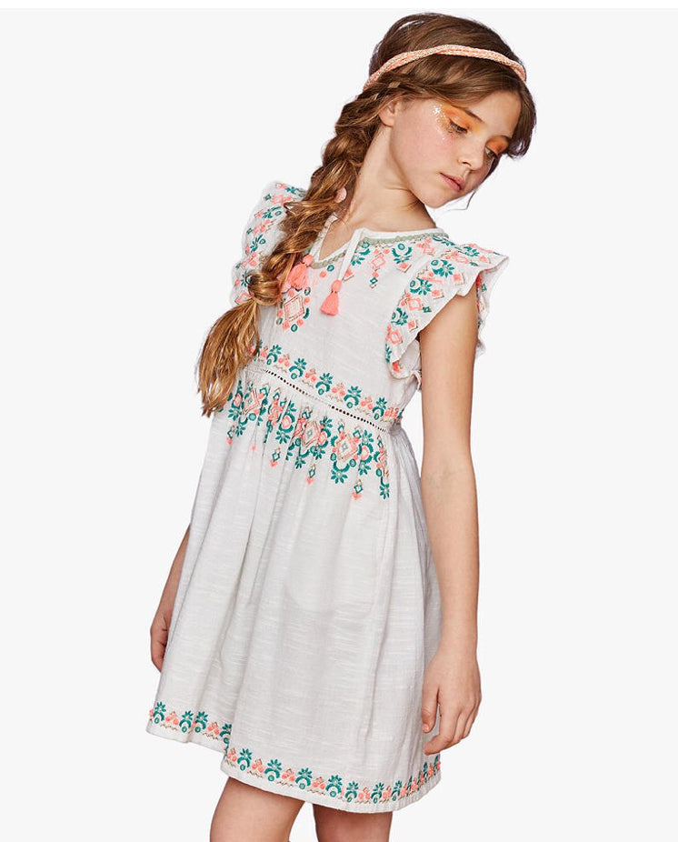 Outside The Lines Embroidered  Dress