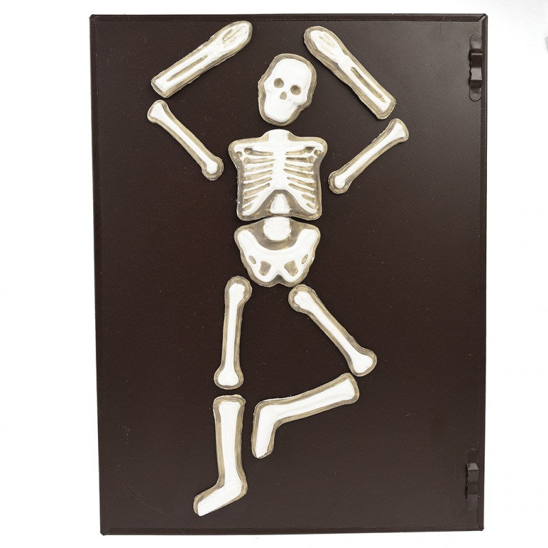 Rex London Make Your Own Glow In The Dark Skeleton Magnet