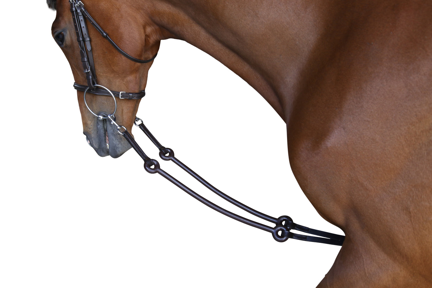 Saddlery - Martingales