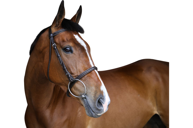 Bridle: race - premium leather