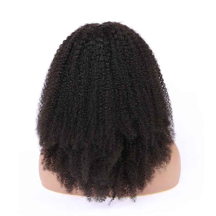 4b Afro Coily Lace Front Wig