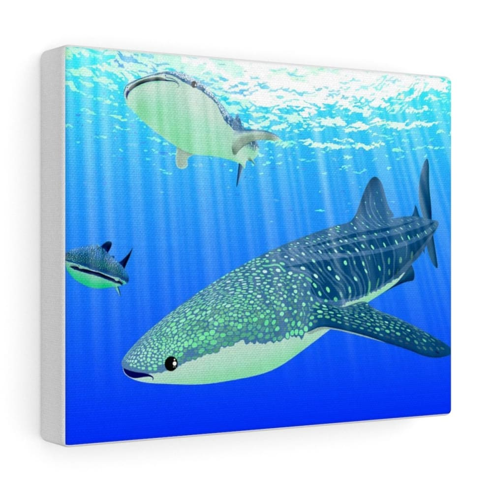 Tableau requins baleines - 10″ × 8″ / Premium Gallery Wraps