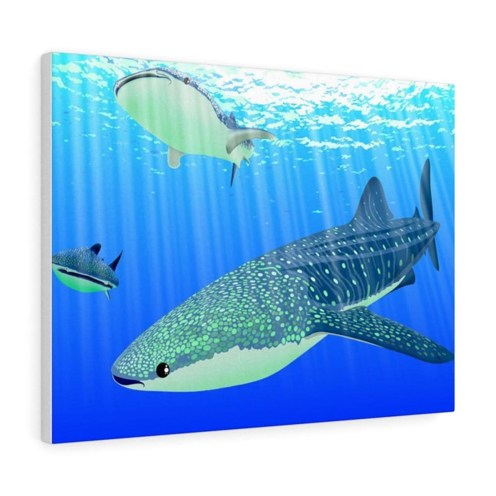 Tableau requins baleines - 24″ × 18″ / Premium Gallery Wraps