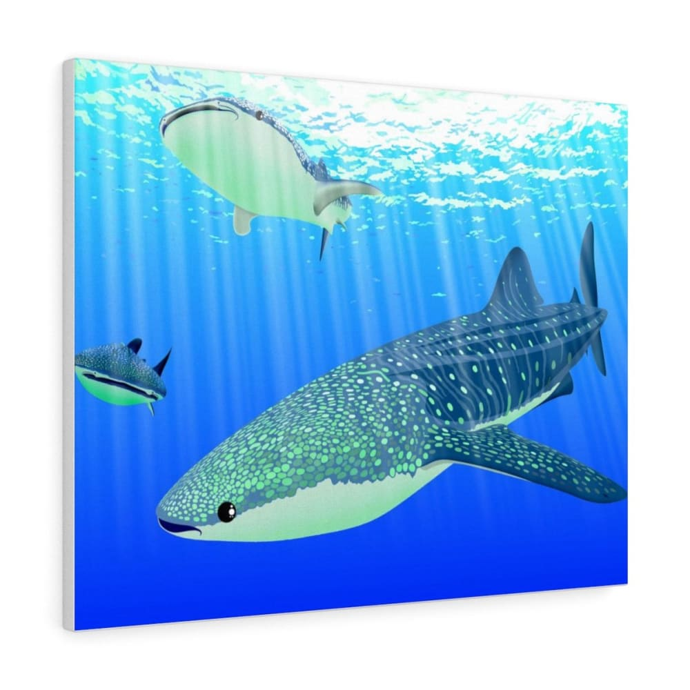 Tableau requins baleines - 30″ × 24″ / Premium Gallery Wraps