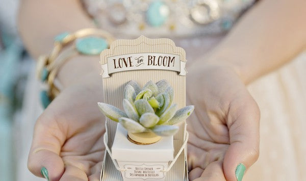 Succulent Bottle Stopper by Kate Aspen | Andie Freeman Photography