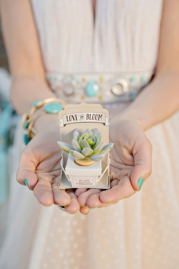 Succulent bottle stopper favor | Andie Freeman Photography