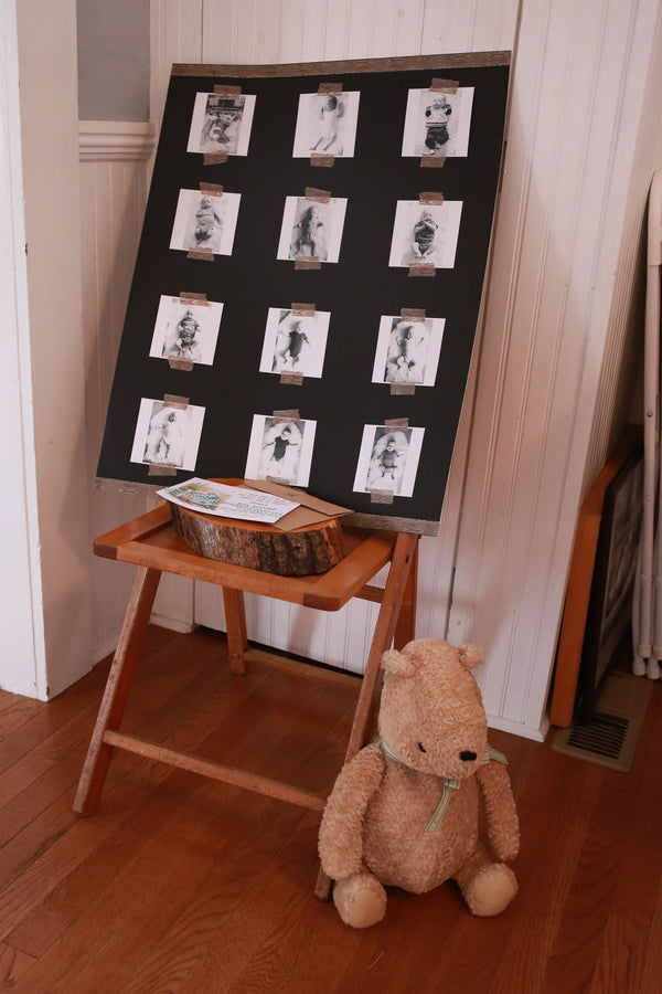 Baby Photos Display | Winnie the Pooh First Birthday Party | Whit Meza Photography