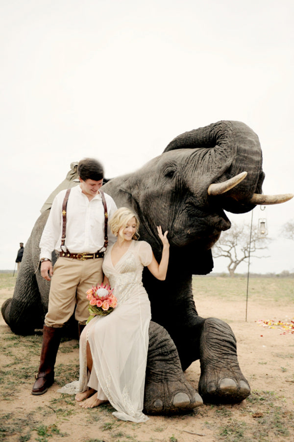 Bride and Groom with Elephant | African Safari Wedding | Sarah Marie Photos