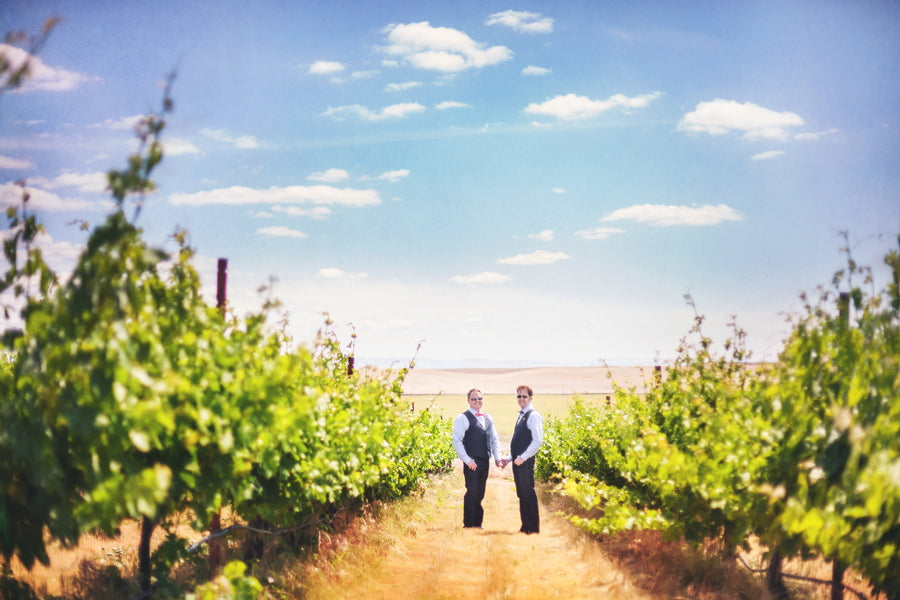 Vineyard Wedding | Mark VanDonge Photography