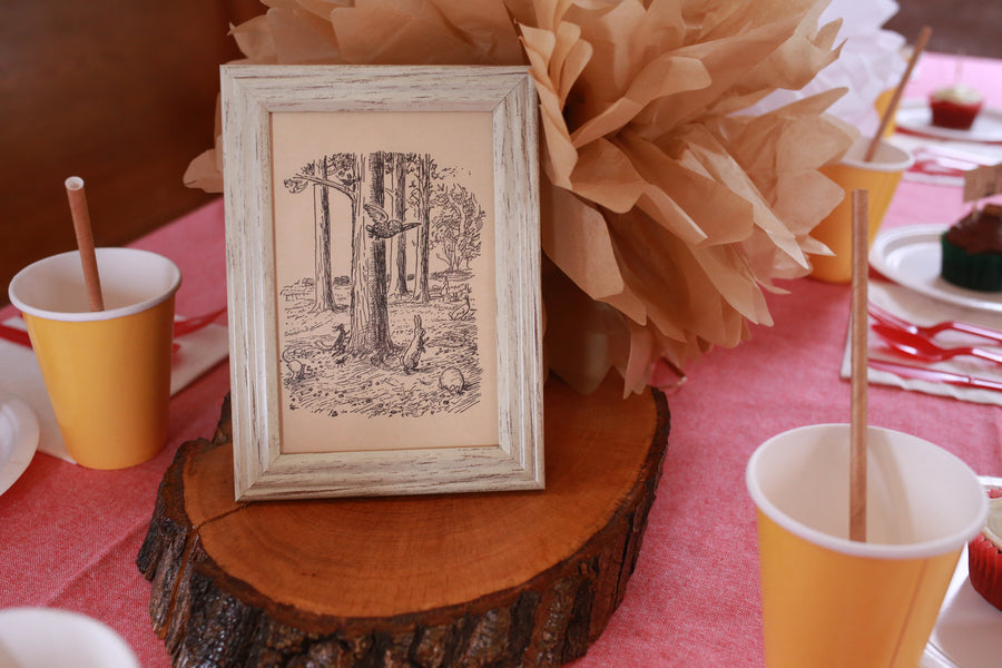 Framed Book Illustration| Winnie the Pooh First Birthday Party | Whit Meza Photography