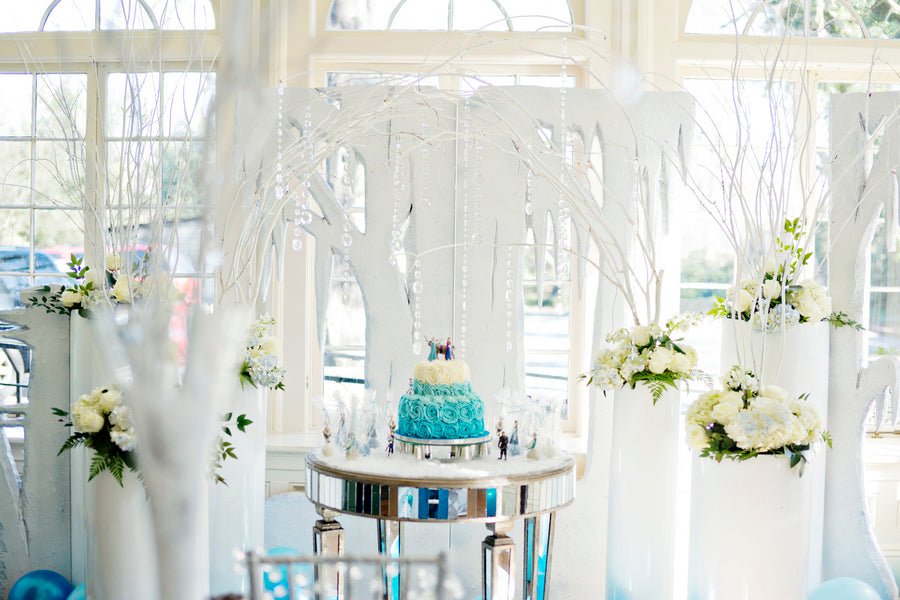Frozen Themed Birthday Party Room - Andie Freeman Photography