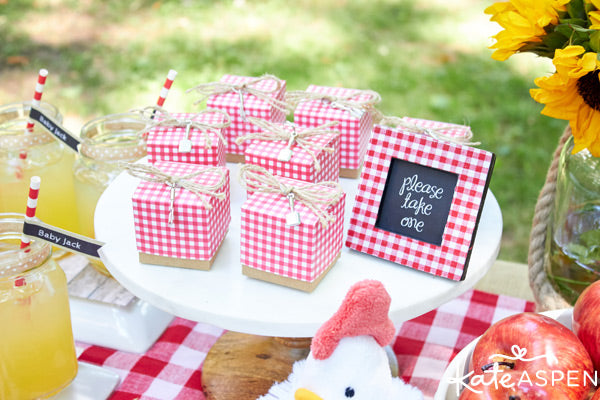 Gingham Baby-Q favor boxes from Kate Aspen