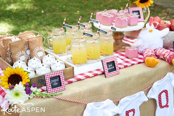 Baby-Q Baby Shower Inspiration from Kate Aspen