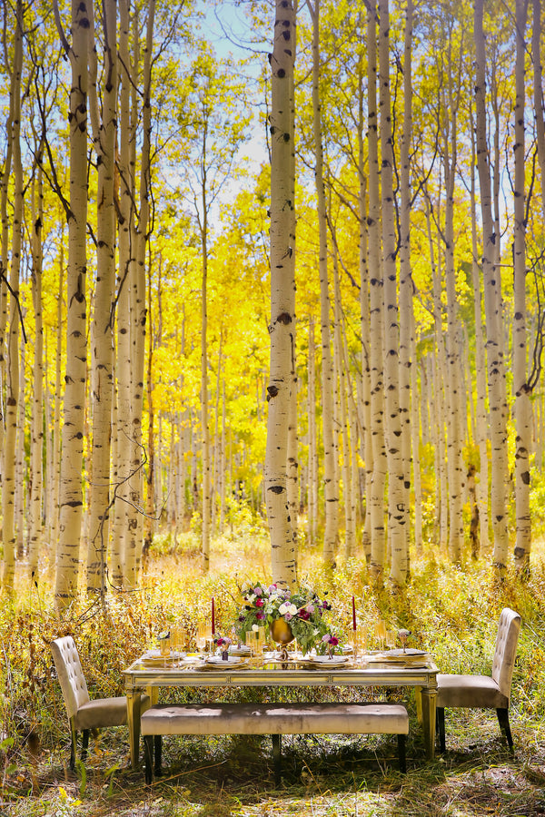 Gorgeous wedding table in woods during fall | Pepper Nix Photography