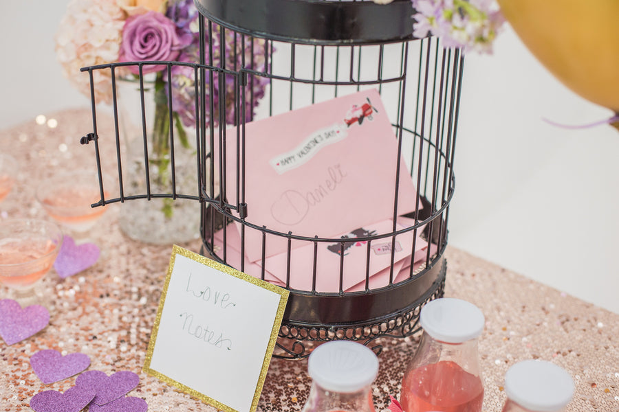 Love Notes in Bird Cage  | Tutu Cute Valentine's Day Birthday Party | Stephanie Massaro Photography