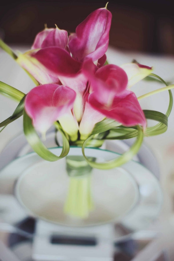 Pink Lilies | Laura Dee Photography