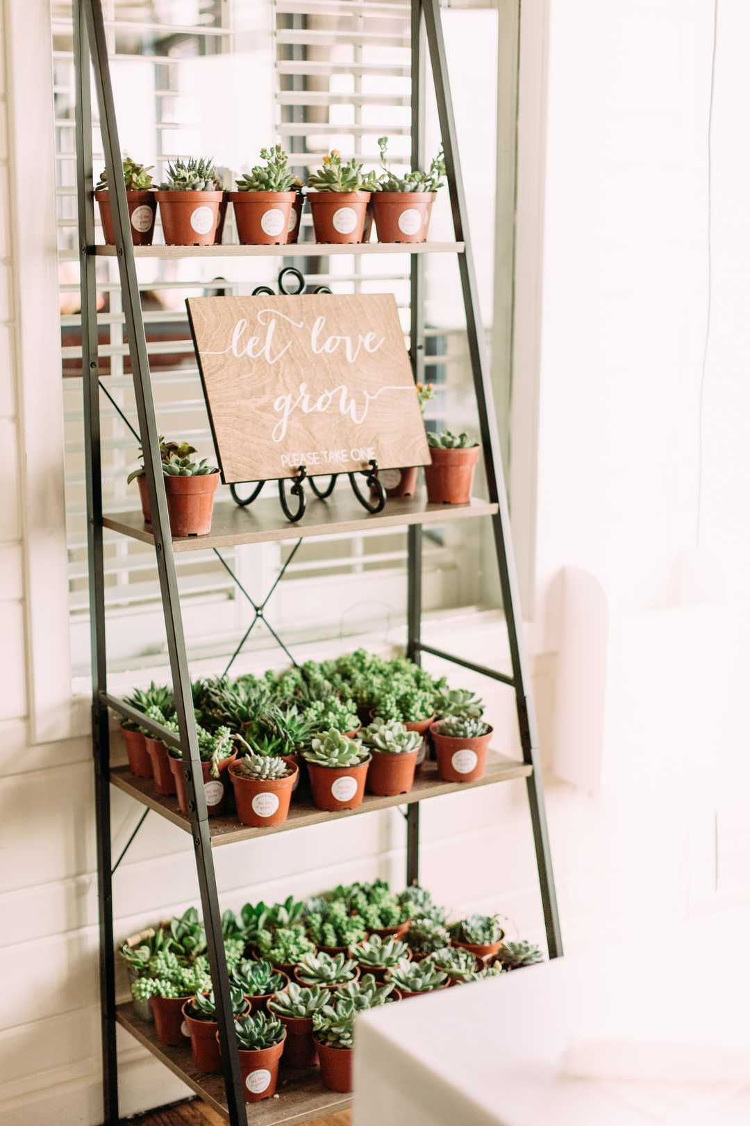 Succulent Wedding Favors | A Summer Bohemian Wedding | Kate Aspen