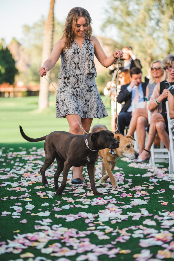 Dogs Down the Aisle | A Soft-Colored Country Club Wedding |Randy + Ashley
