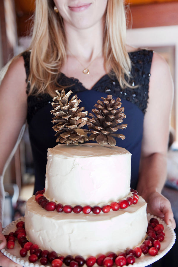Rustic Winter Wedding Cake | Tana Photography | IDoWED McCall