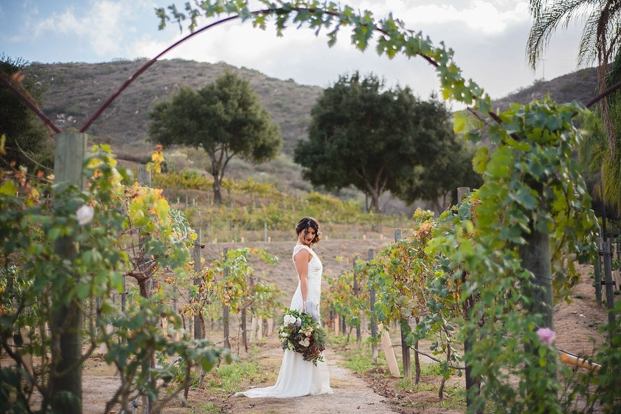 Vineyard Bridal Shoot | Winter Winery Wedding | Amy Millard Creative Studio