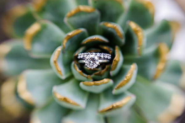 Wedding Rings in a Succulent Boho Shoot | Rebecca Anne Photography