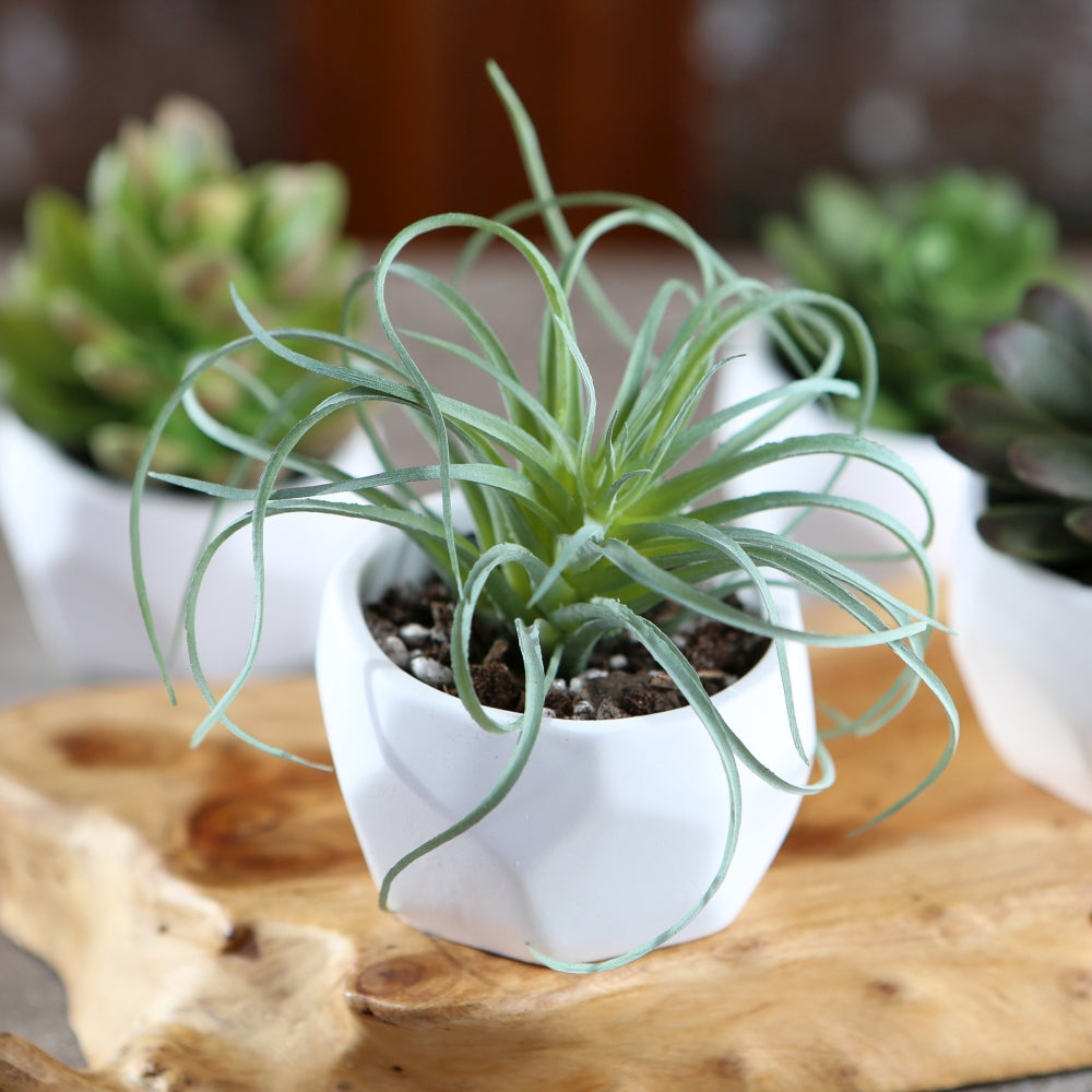 Load image into Gallery viewer, Modern Garden Geometric White Planter (Set of 4)